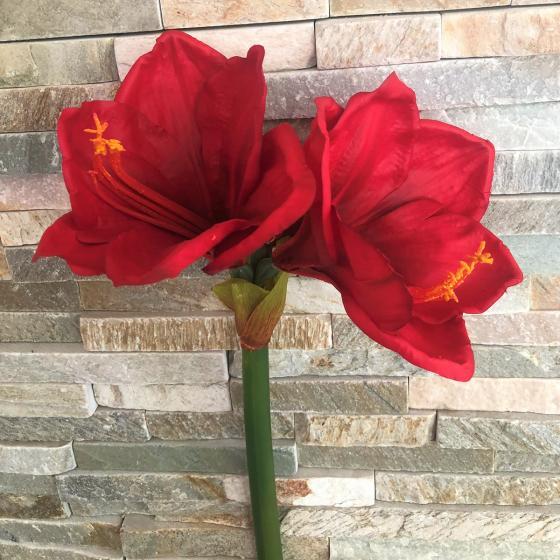 Kunstpflanze Amaryllis, rot   #4