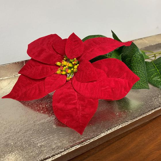 Kunstpflanze Poinsettia, rot   #4