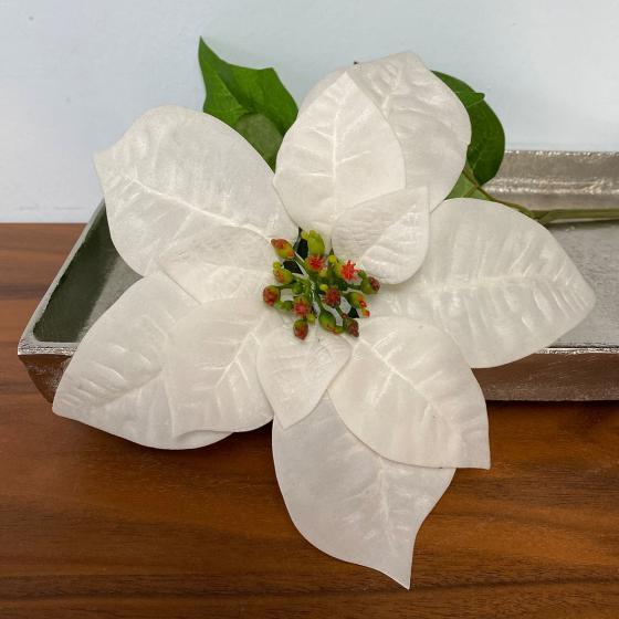 Kunstpflanze Poinsettia, weiß   #4