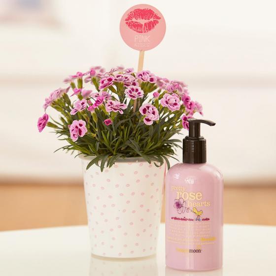 "Nelke Pink Kisses® Friendset 2 ""Sommerduft"" mit blumig duftender Körperlotion von treaclemoon | #5"