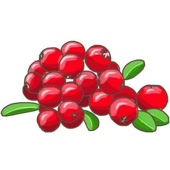 Blu Bio Cranberry | #5