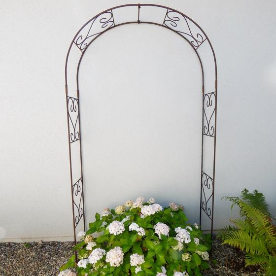 Rosenbogen rund, 230 x 120 cm | #5