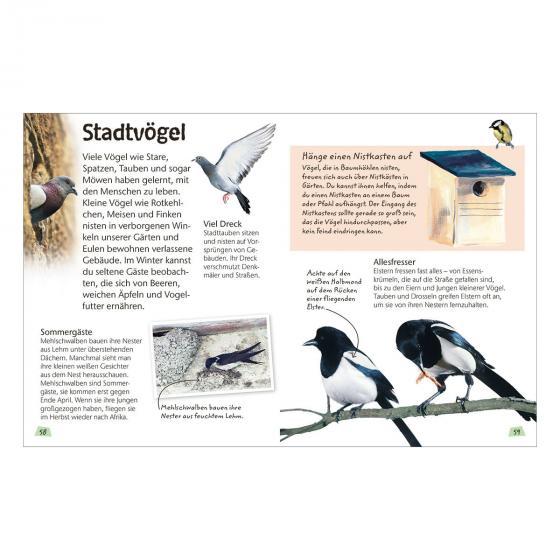 Naturführer für Kinder - Vögel | #5