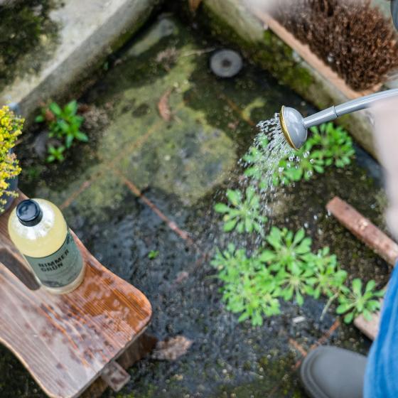 Natürliches Grünbelag- und Algenentferner-Konzentrat Nimmergrün, 750 ml | #5