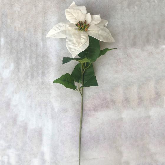 Kunstpflanze Poinsettia, weiß   #5