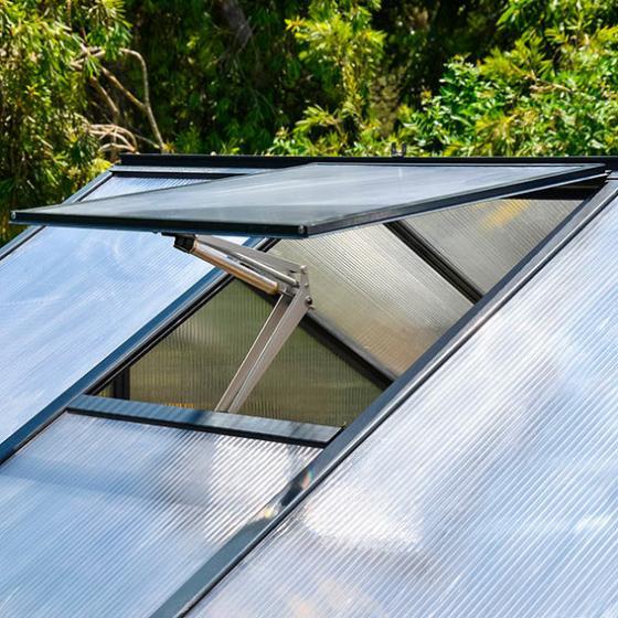 Gewächshaus Glory 8 x 8, inkl. Stahlfundament und Zubehör, 244 x 244 x 268 cm, anthrazit | #5