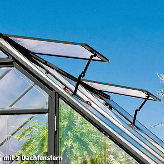 Gewächshaus Victory Orangerie inkl. Stahlfundament, 305 x 365  x  - 10,5 qm, anthrazit | #5