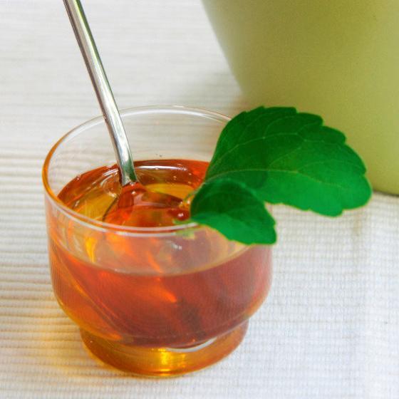 Kräuterpflanze Stevia Sweety, im ca. 12 cm-Topf | #5