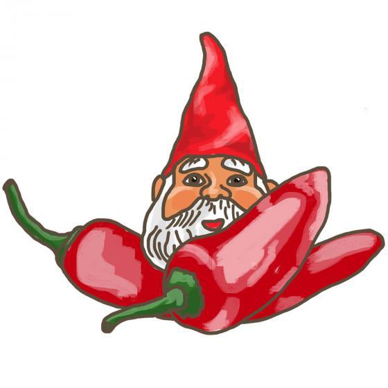 BIO Gemüsepflanze Zwerg-Chili, im ca. 12 cm-Topf | #6