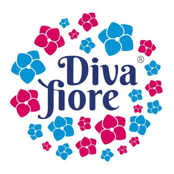 Hortensie Diva fiore®, rosa, im ca. 22 cm-Topf   #6