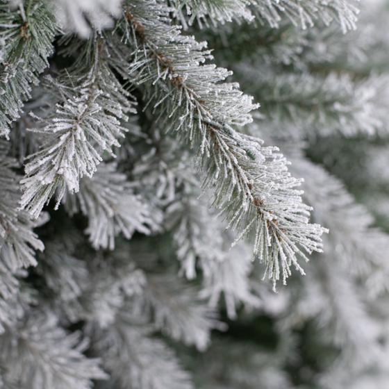 Künstlicher Weihnachtsbaum Fichte. Schneeoptik, mit LED-Beleuchtung, 180 cm | #6