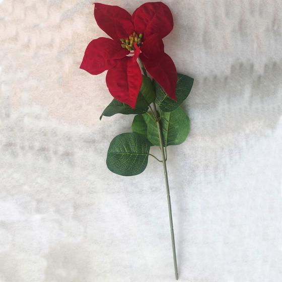 Kunstpflanze Poinsettia, rot   #6