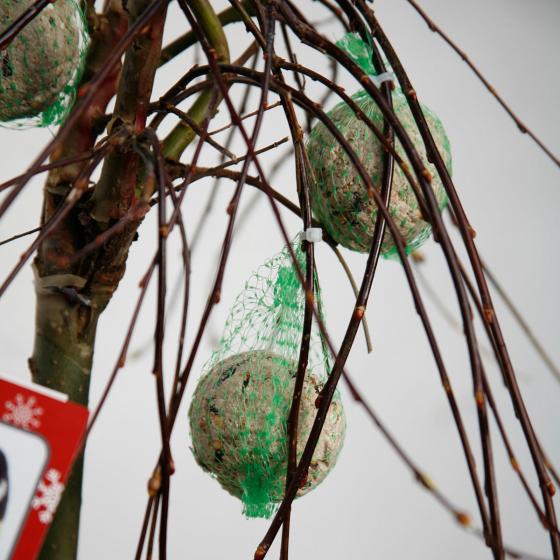 Vogelfutterbaum | #7