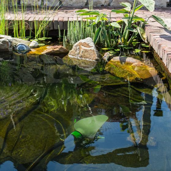 Velda Starterset Fischteich bis 3.000 Liter | #7