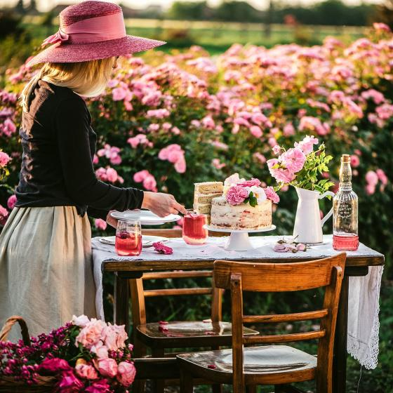 Essbare Culinaric Rose, pink, im ca. 22 cm-Topf | #7