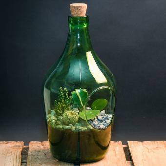 DIY Terrariumflasche mit Seitenöffnung, Komplettset, 3 Liter | #8