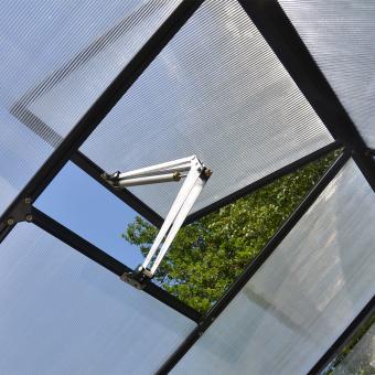 Gewächshaus Victory Orangerie inkl. Stahlfundament, 305 x 365  x  - 10,5 qm, anthrazit | #9