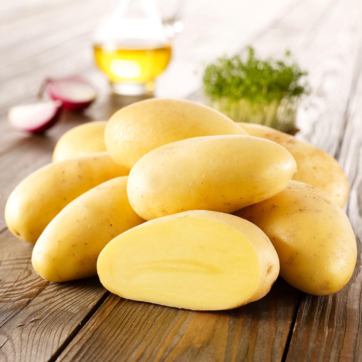 Kartoffel Cilena, 10 Stück