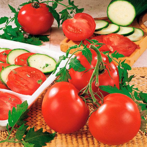 tomaten pflanzzeit wann tomaten pflanzen tomaten pflanzen. Black Bedroom Furniture Sets. Home Design Ideas