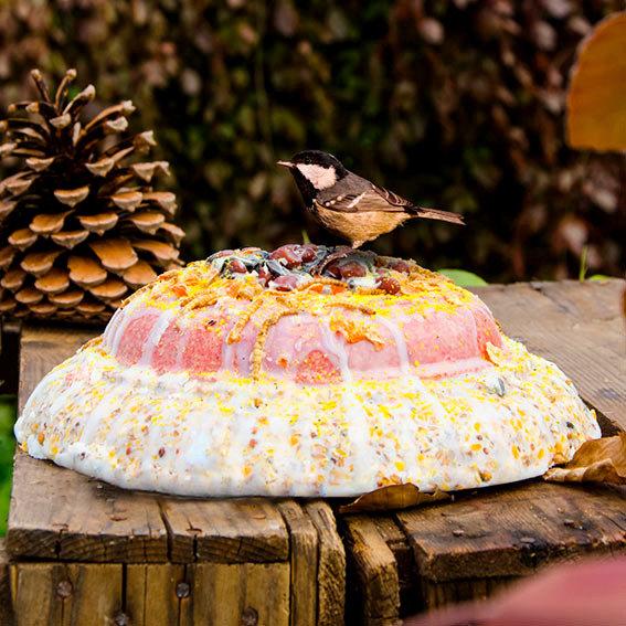 Vogelfutter-Torte, 2 kg