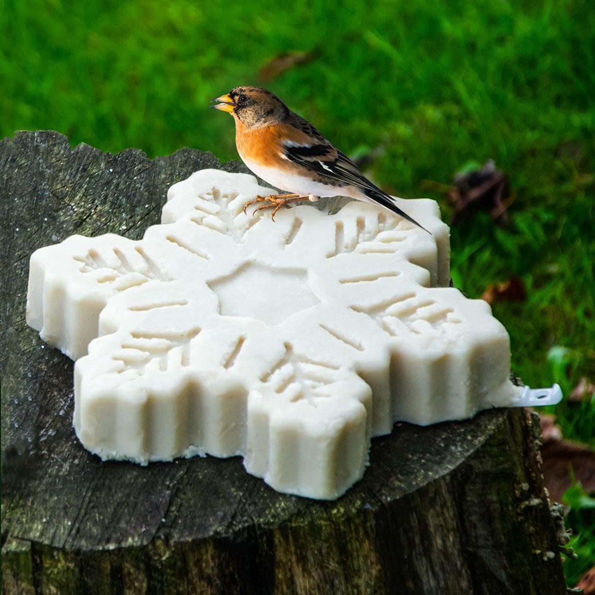 vogelfutter schneeflocke online kaufen bei g rtner p tschke. Black Bedroom Furniture Sets. Home Design Ideas