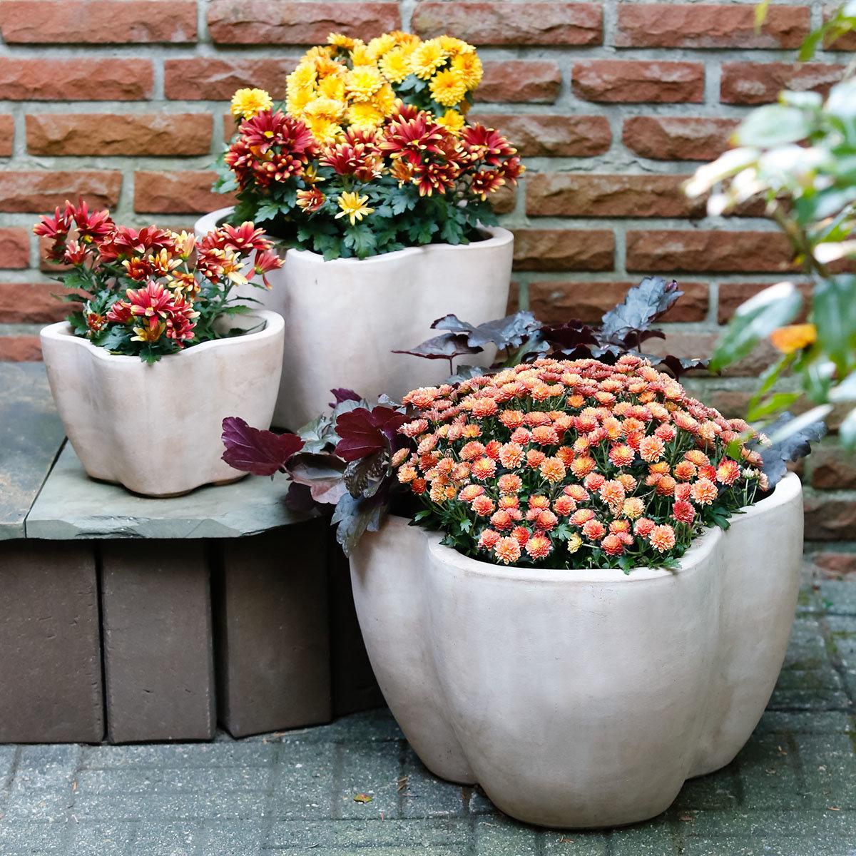 Terracotta Pflanzkübel Swing, 3er-Set