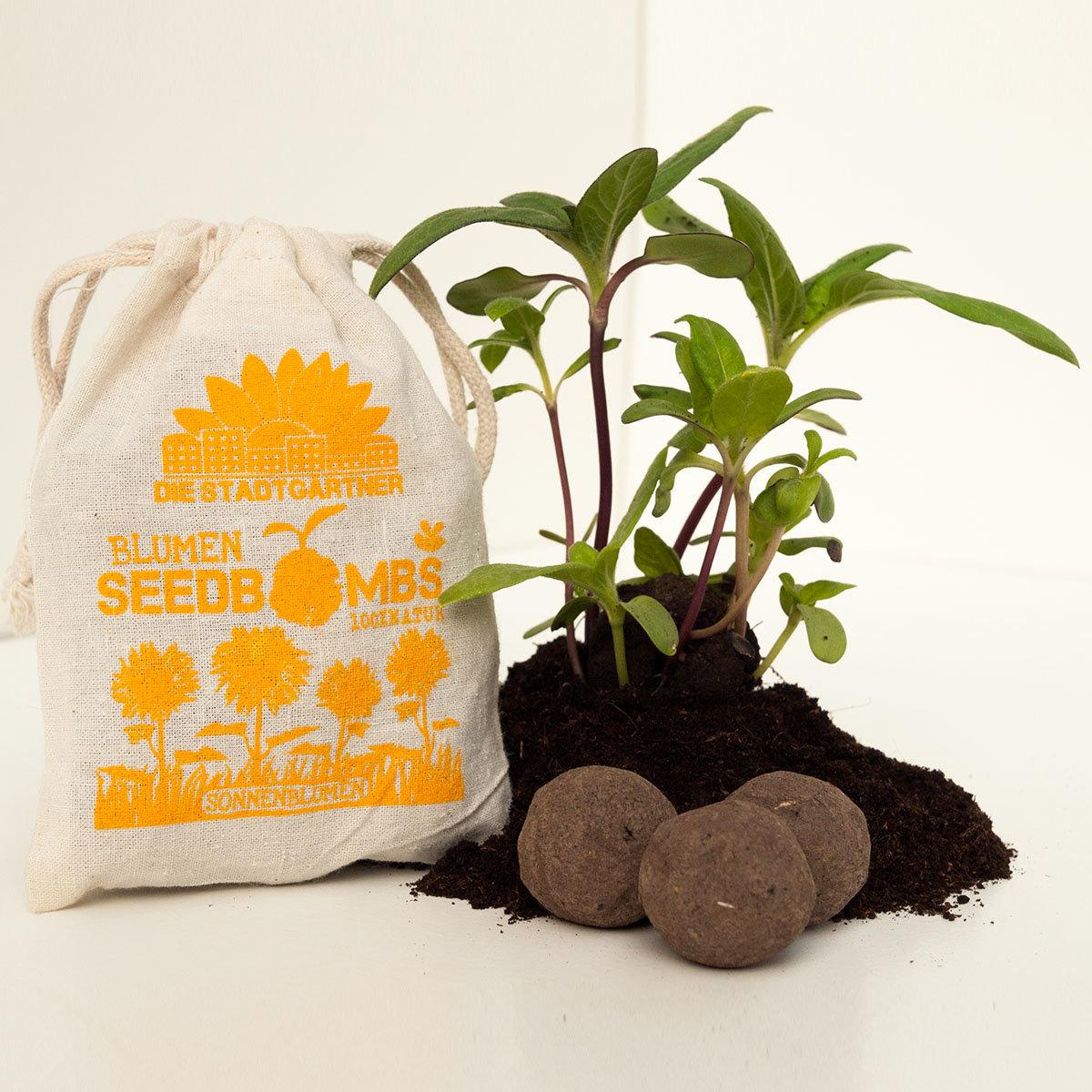 blumen seedbombs sonnenblumen online kaufen bei g rtner p tschke. Black Bedroom Furniture Sets. Home Design Ideas