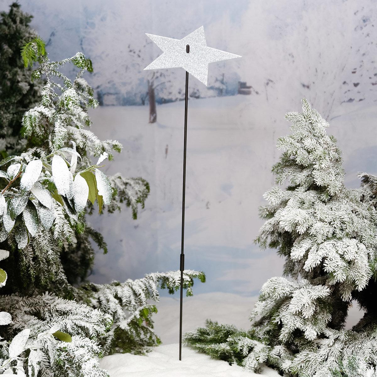Gartenstecker Winterspiegel, groß