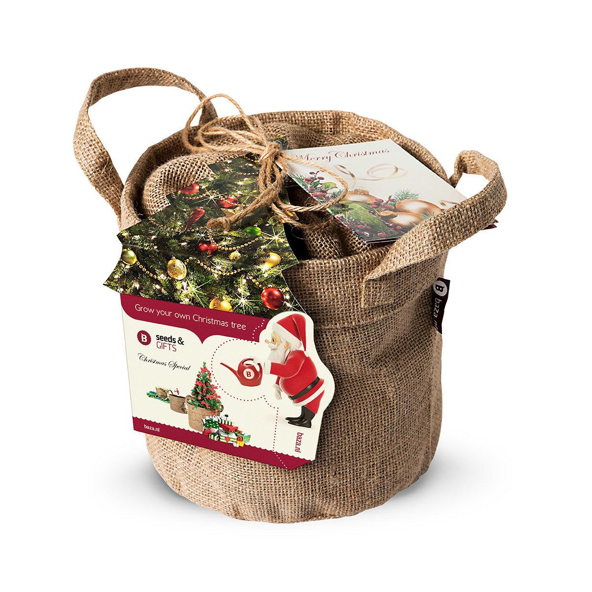 Weihnachtsbäumchen Saatgut im Jute-Anzuchtbeutel, inkl. 6 Liter Erde und Weihnachtskarte