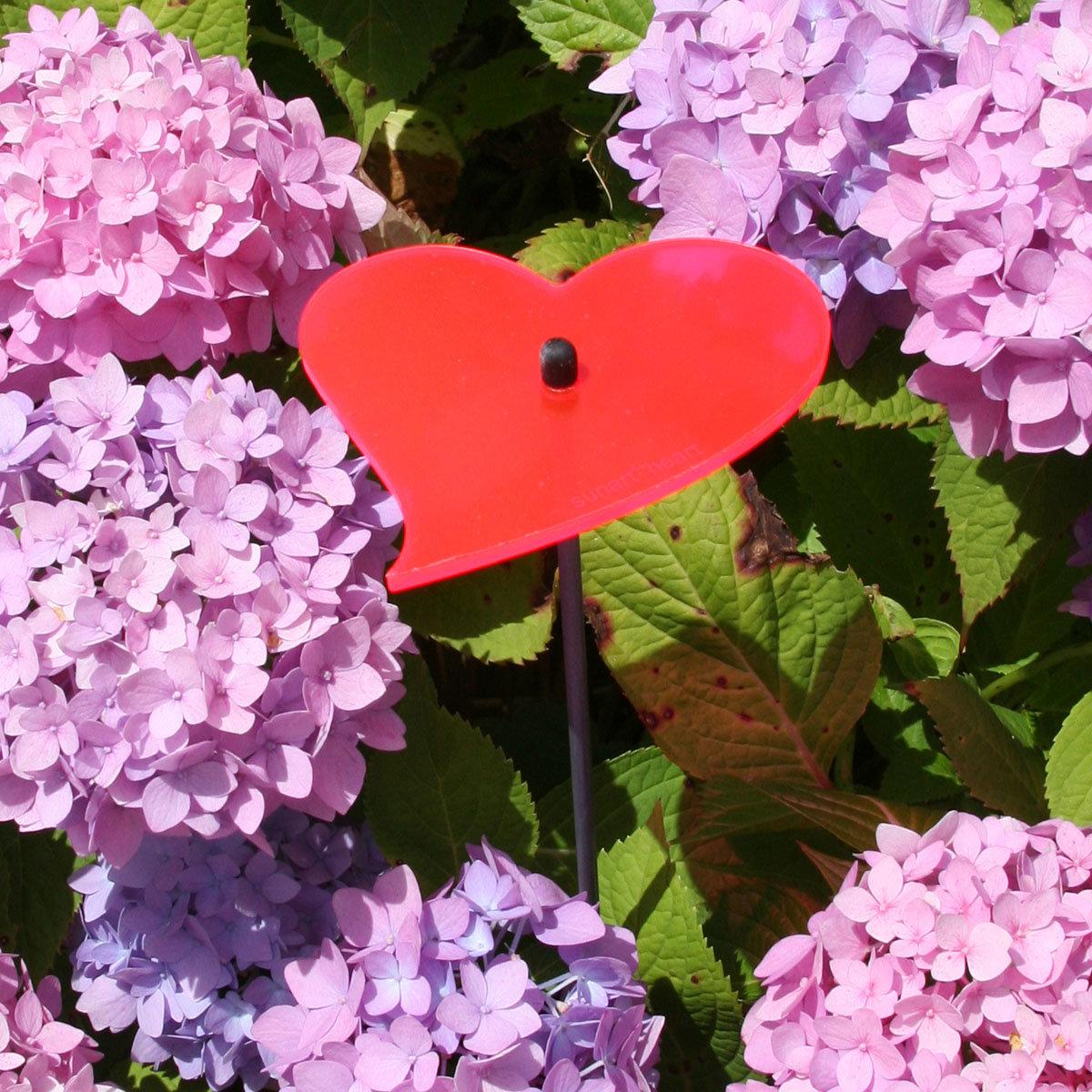 sunart® Acrylglas Lichtfänger Herz, rot