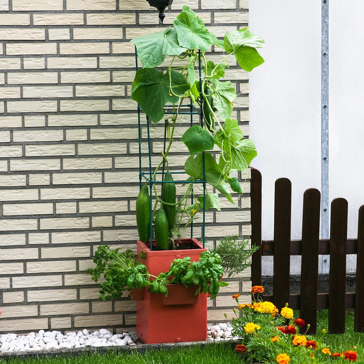 Gemüse- und Pflanztower, hoch