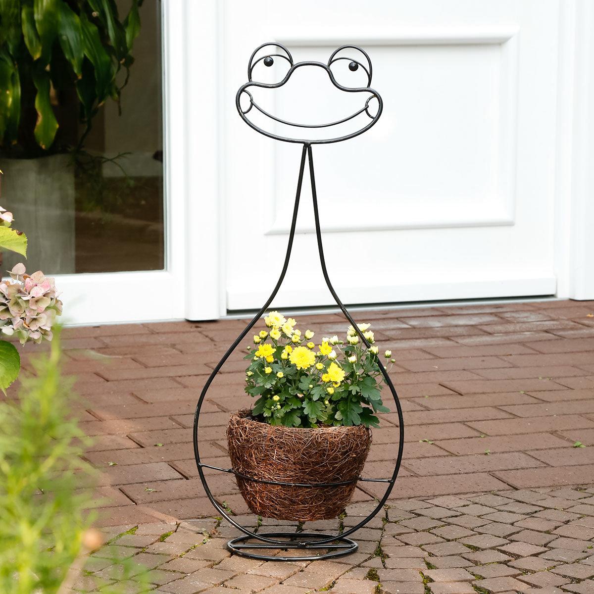 Pflanzkorb Frosch Ferdinand