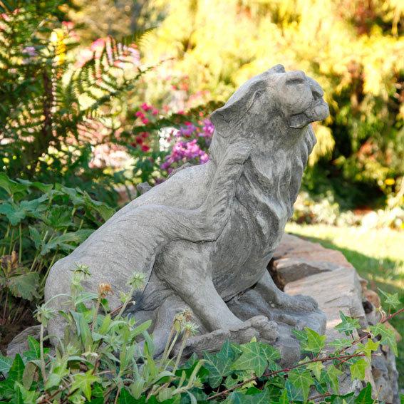 Löwenkatze