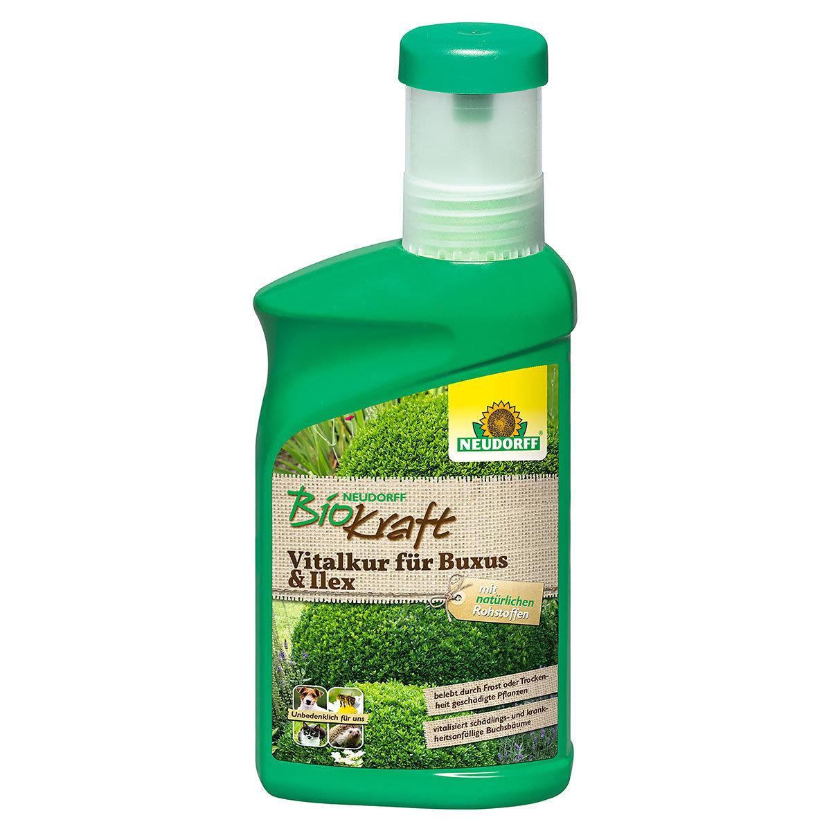 Neudorff BioKraft Vitalkur für Buxus & Ilex, 300 ml