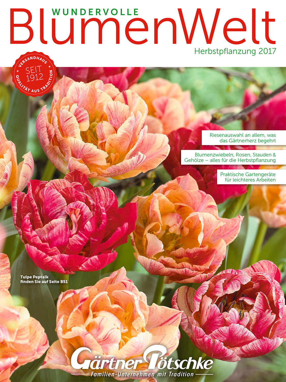 Wundervolle Blumenwelt 2017