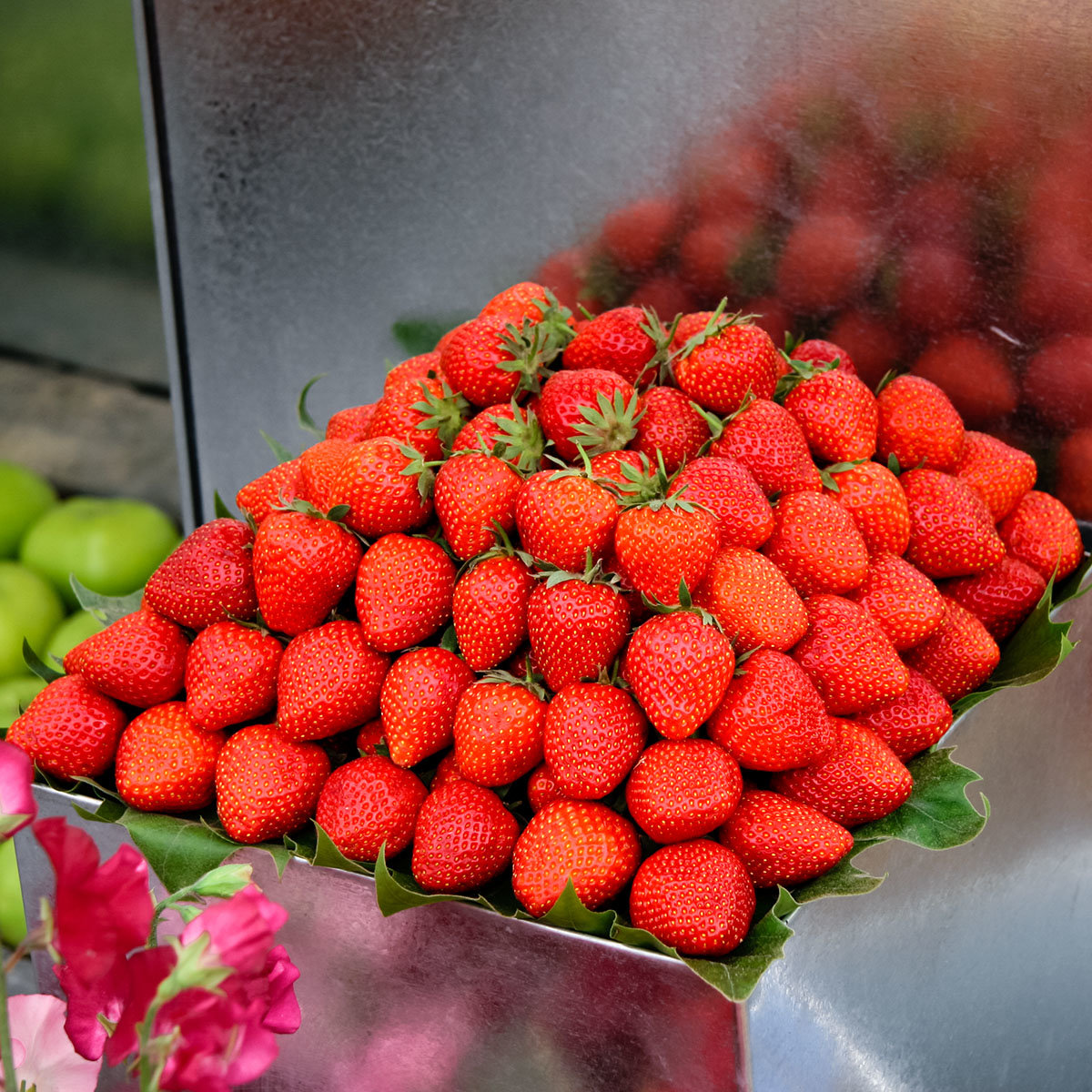 Erdbeere Hummi® Praline