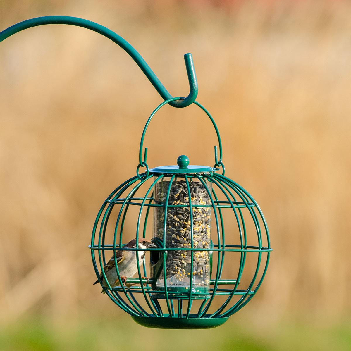 Vogelfutter-Säule mit Schutzkorb