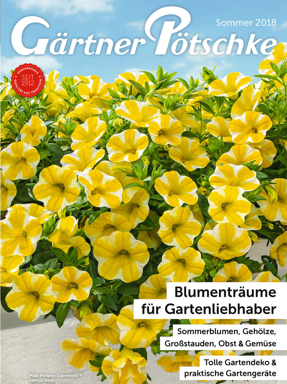 Blumenträume für Gartenliebhaber