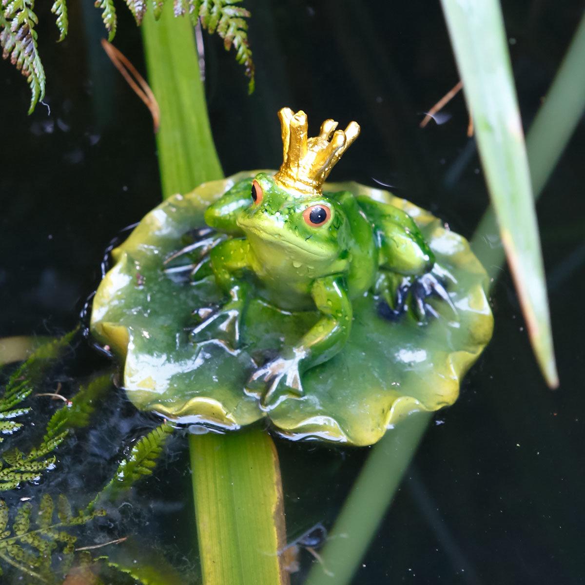 Froschkönig Froggy