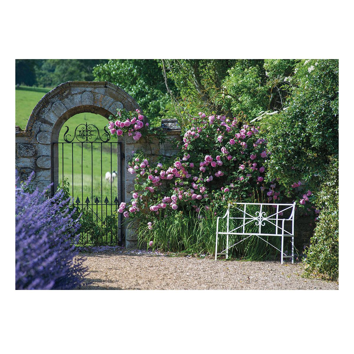 Gartenposter Rosentraum, 210 x 150 cm