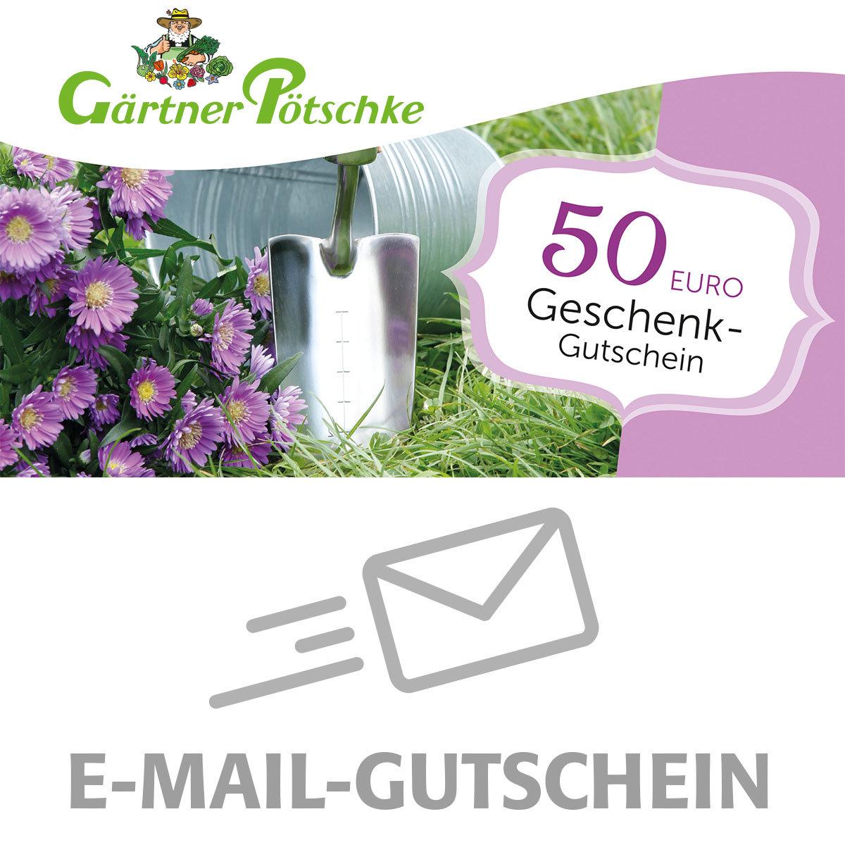 50,- Euro Online-Geschenkgutschein