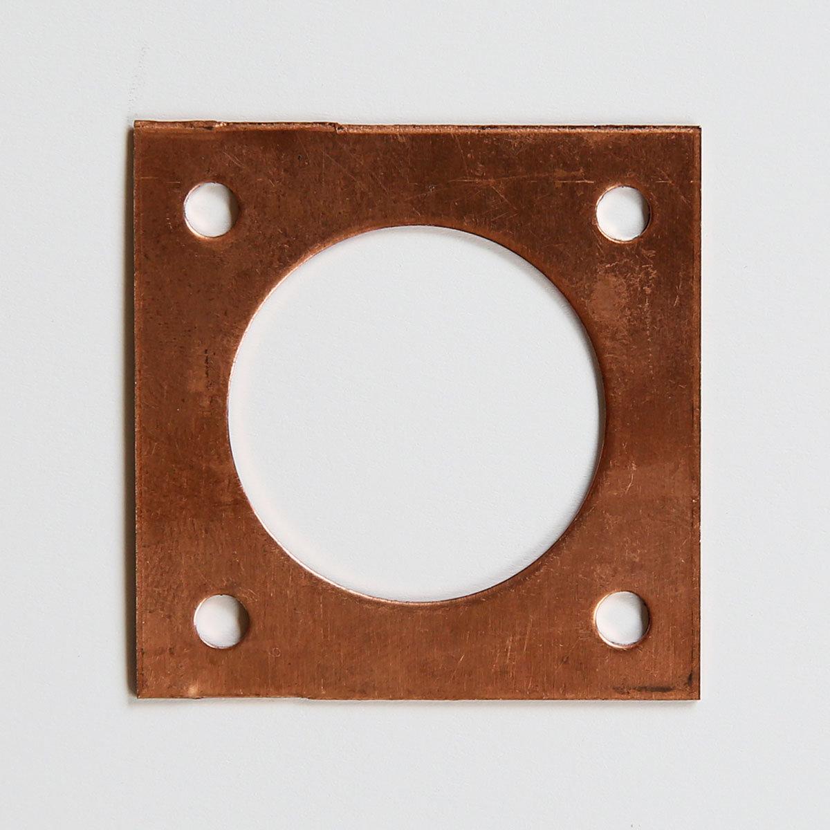 Lochschutz für Holz-Nistkästen