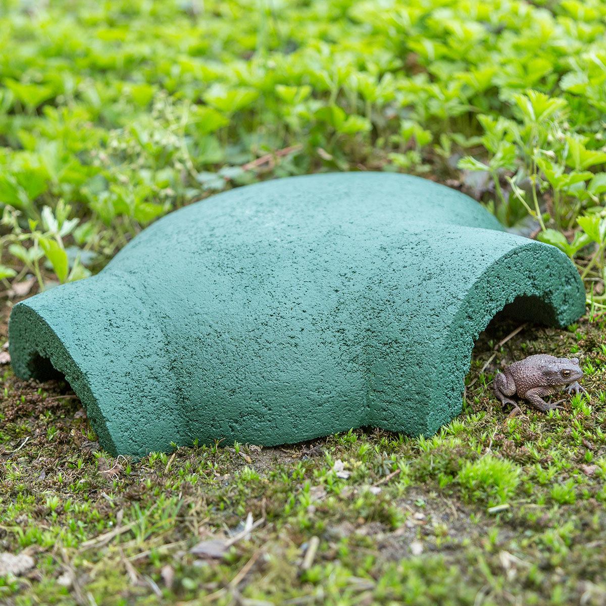 Frosch- und Krötenhaus Greeny