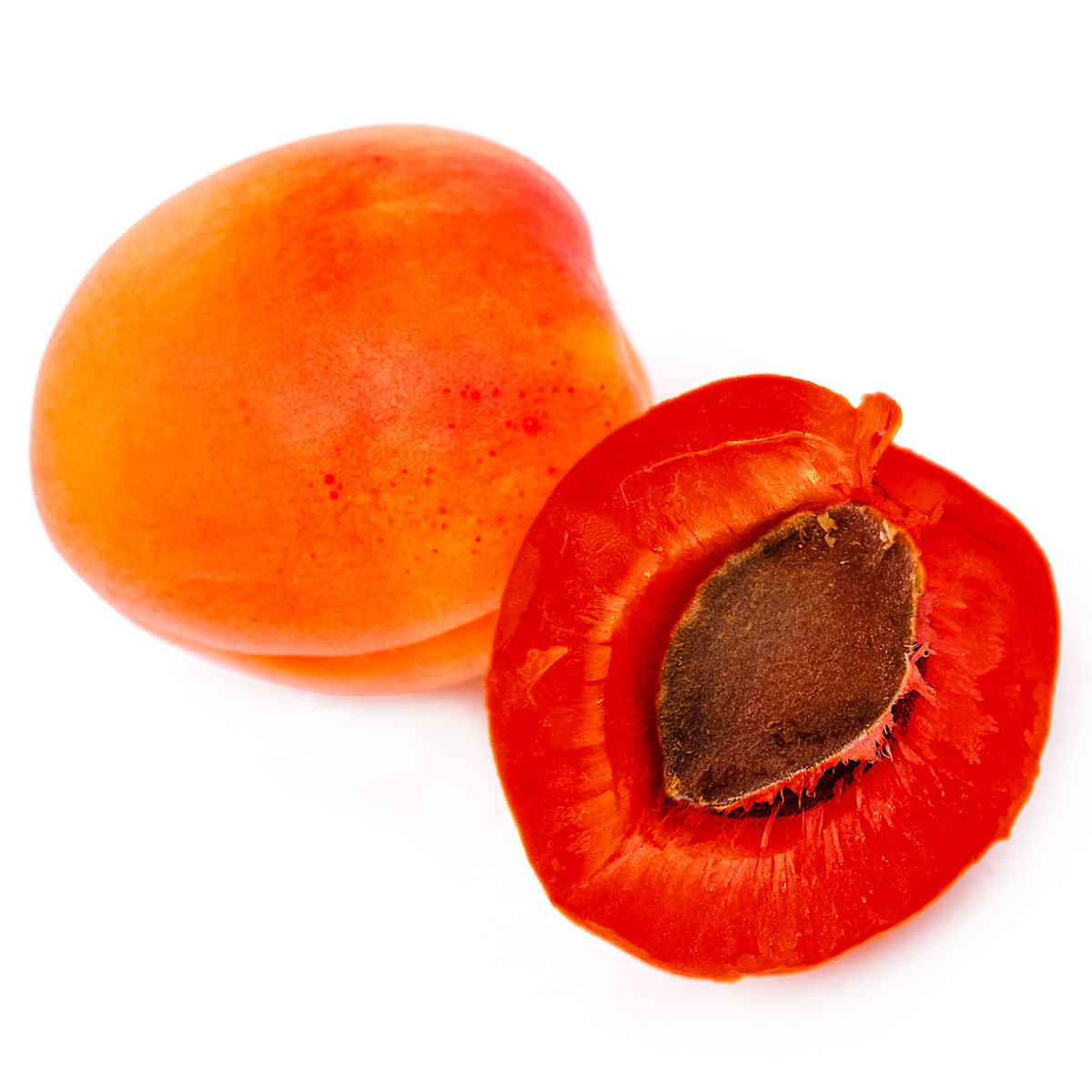 Rotfleischige Aprikose Vampira, im ca. 23 cm-Topf