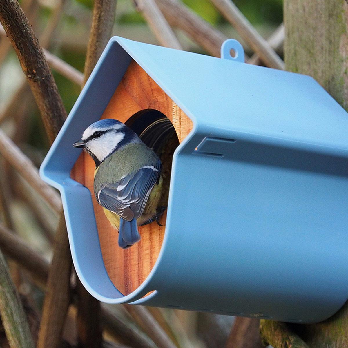 Erdnussbutterglashalter Evie, 13x15x17 cm, Kunststoff, blau