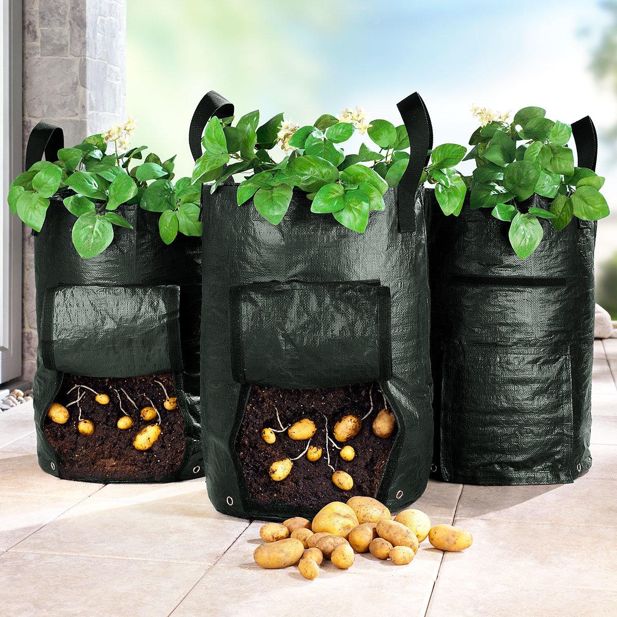 Kartoffelpflanztasche, 3er-Set, 2x40 Liter, reißfest, Kunststoff