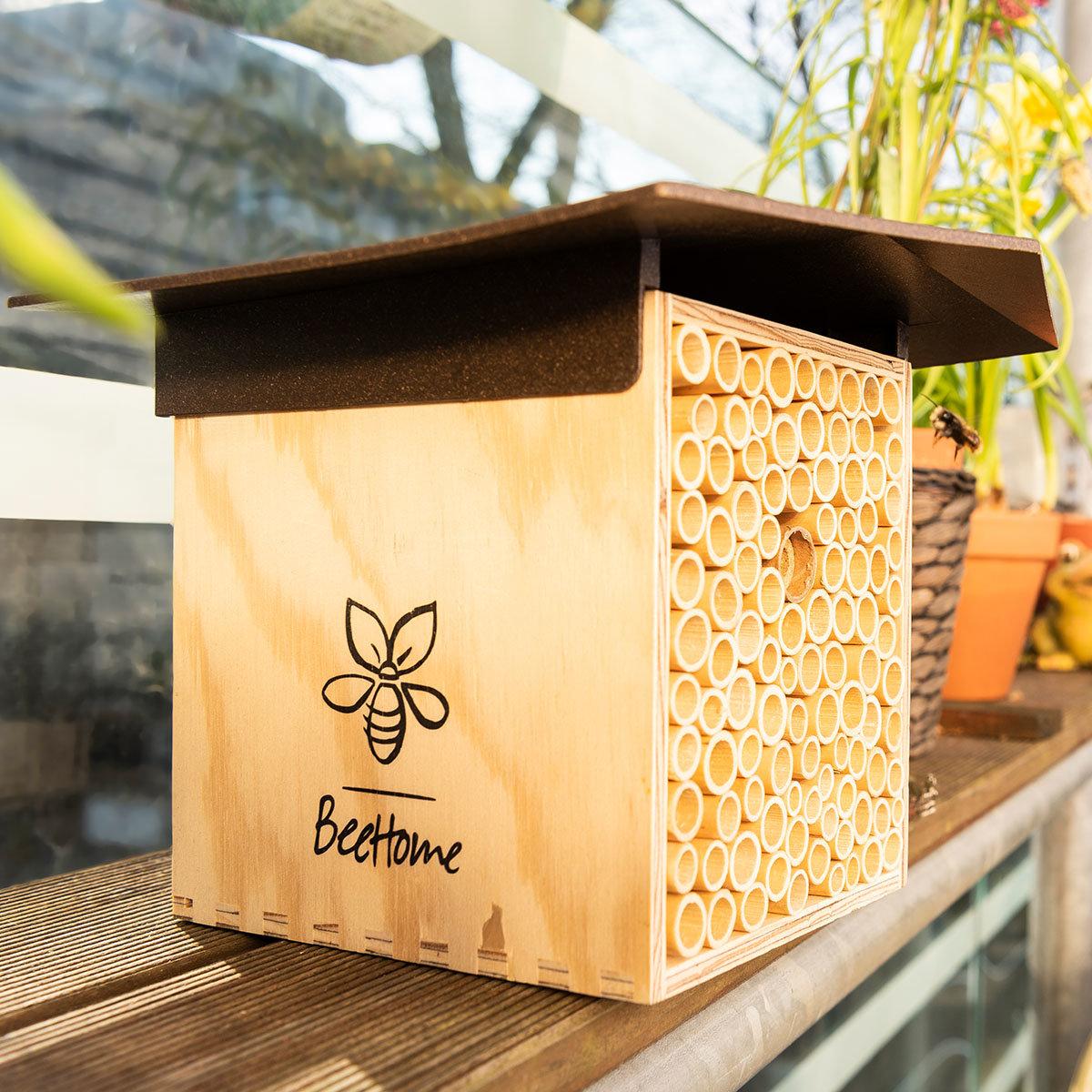 Insektenhotel BeeHome mit Gutschein für Mauerbienenkokons