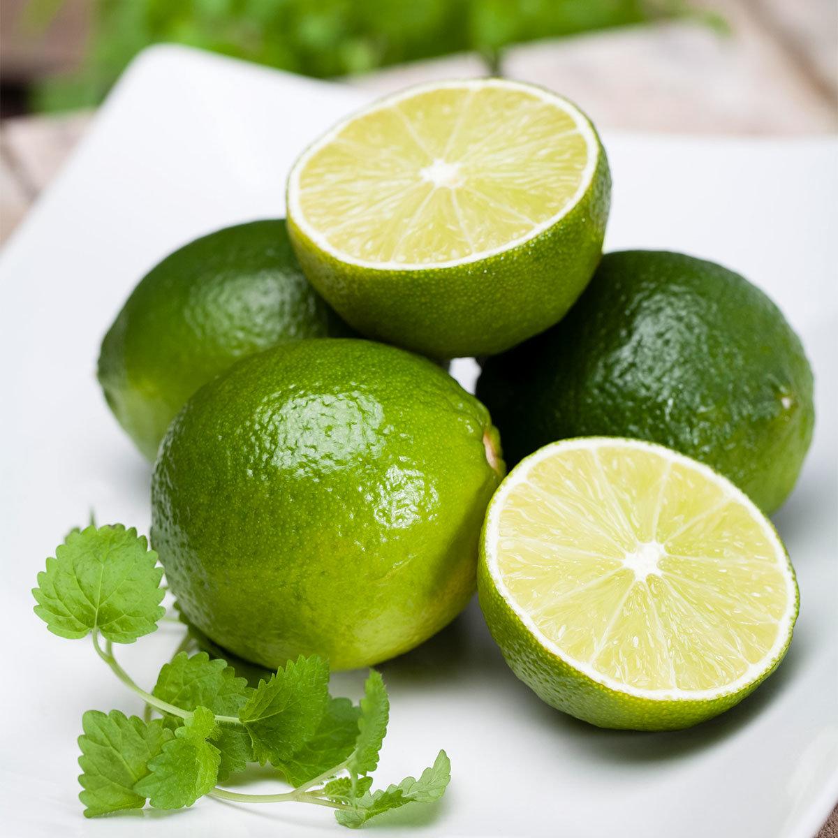 Grüner Limetten-Stamm, im ca. 17 cm-Topf