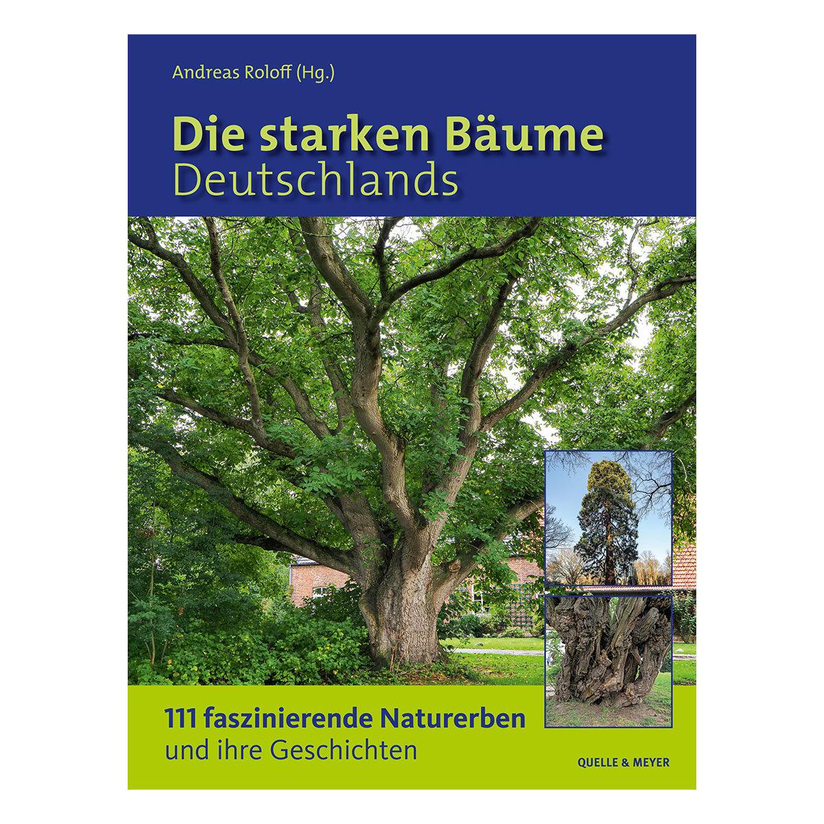 Die starken Bäume Deutschlands  111 faszinierende Naturerben und ihre Geschichten