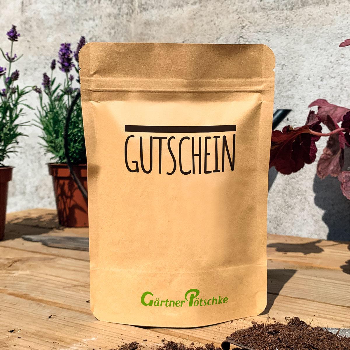 Gutschein - Kresse